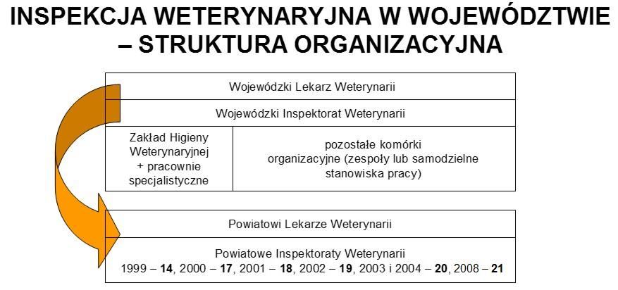 IW - struktura.jpeg